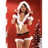 Velvet Santa costume