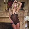 Fishnet babydoll, thong and toy
