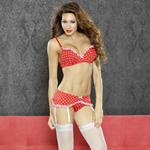 Perfect pin up bra and garter set reviews