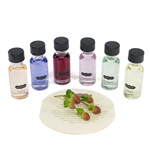 Six scents kit reviews