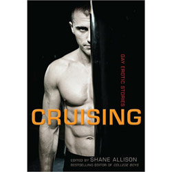 Cruising gay erotic stories - Book