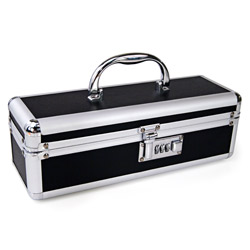 Lockable sex toy case - sex toy storage