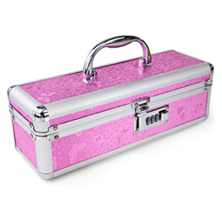 Lockable sex toy case - Storage container