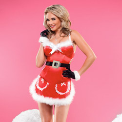 Satin Santa apron dress - sexy costume