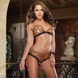 Leopard bra and panty - bra and panty set