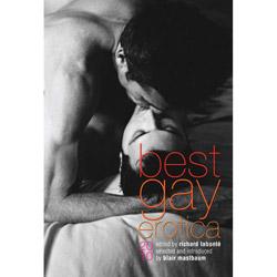 Best Gay Erotica 2010 - book