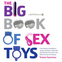 Big Book Of Sex Toys - erotic book