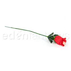 Pecker rose 12 pieces in vase - DVD