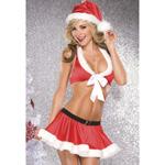 Santa top and skirt costume reviews