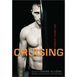 Cruising gay erotic stories - book