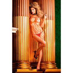 Fencenet bodystocking - bodystockings