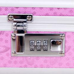Storage container - Lockable sex toy case - view #2