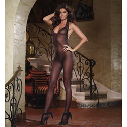 Sheer bodystocking - bodystockings