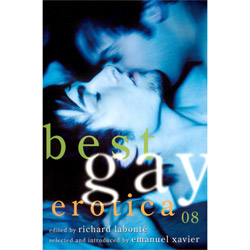 Best Gay Erotica 08 - erotic book