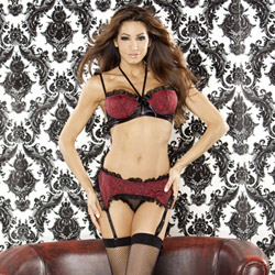 Bedroom bordello bra and garter set - bra and panty set