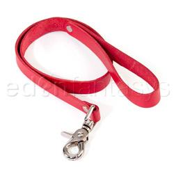 Bound leash - collar