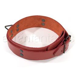 Lined collar - collar