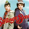 strangebrew