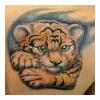 tigerlilly5