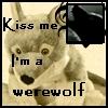 2playfulwolves