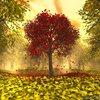 Autumnrose