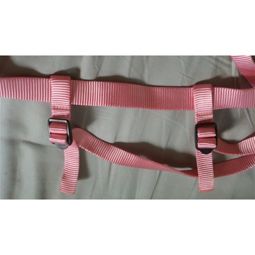 Moveable Leg Straps